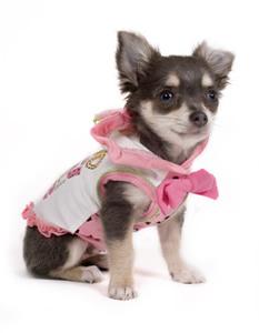 Perrito con vestido color rosa.