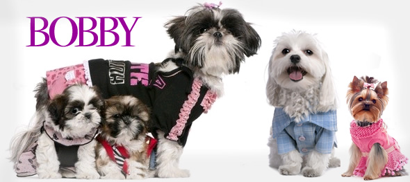 Perros vestidos con colección de moda para mascotas.